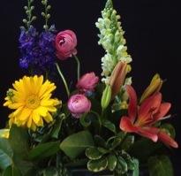 Longevity Research Flowers