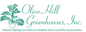 olivehilllogo