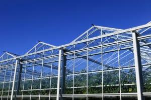 greenhouselarge