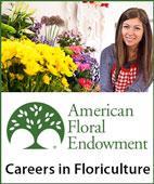 ASCA Careers Ad
