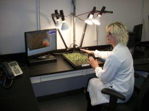 researcheratcomputer