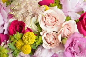 FloralPhoto6
