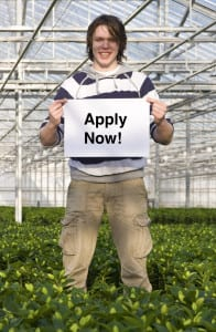 Intern with Apply Now Sign in Greenhouse