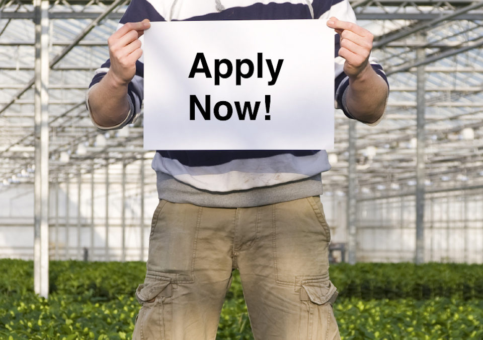Apply by March 1 for AFE's Paid Floriculture Internships!