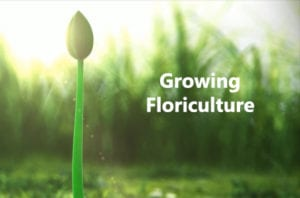 GrowingFloriculture1
