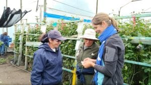 Rose Buitenhuis, of The Vineland Research and Innovation Centre in Lincoln, Ontario, and Melissa Muñoz Agudelo, of Clemson University in Clemson, South Carolina spent a day visiting Colombia growers before making presentations at Proflora 2017.