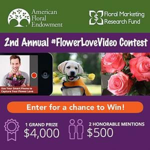 flower love video contest landing page for contest judges