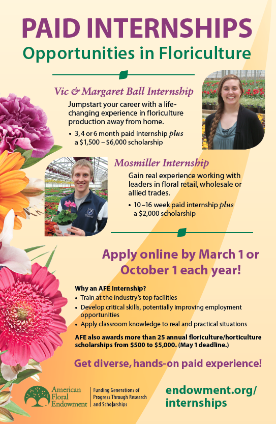 Internships In Floriculture And Horticulture American Floral Endowment