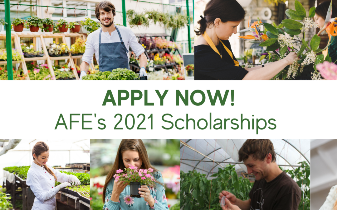 Announcing AFE's 2021 Scholarship Applications!