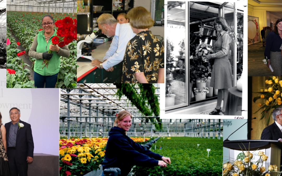 Photos Through the Decades