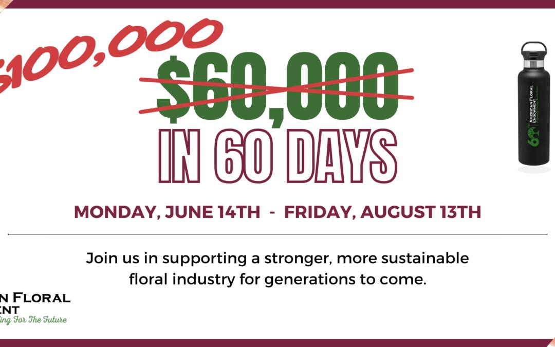 60 Days to Raise $100,000 – Peer-to-Peer Campaign