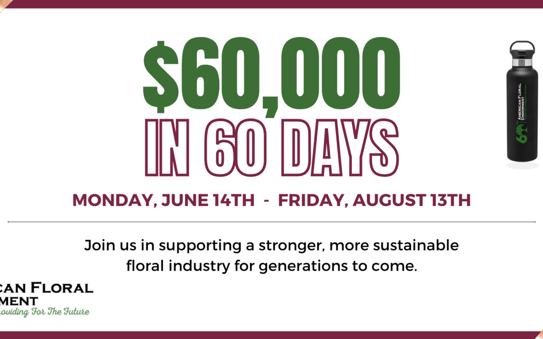 60 Days to Raise $60,000 – Peer-to-Peer Campaign