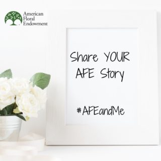 Do you have an AFE story? One of long-time support, how AFE has affected you, or the opportunities you've gained through our resources? We want to hear about it! Tag us in a post with the hashtag #AFEandME or fill it out here: https://buff.ly/3rkDyCI