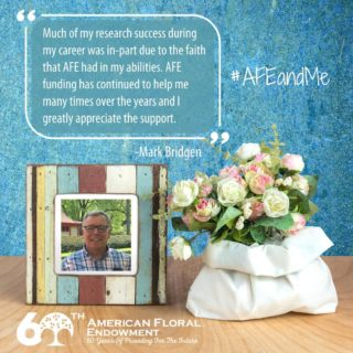 "Long-time supporter and researcher, Mark Bridgen, from @CornellUniversity shares, ""I am extremely grateful to AFE for its funding over the past 36 years. When I was a new, young Assistant Professor at my first university position, AFE funded a large proposal to hybridize Alstroemeria plants. This research project was submitted as a collaboration among 3 universities. This initial funding helped me to eventually receive several much larger grants from the state and federal governments. Much of my research success during my career was in-part due to the faith that AFE had in my abilities. AFE funding has continued to help me many times over the years and I greatly appreciate the support. One of current research projects is breeding Impatiens plants to be resistant to Impatiens Downy Mildew. We have had a great deal of success and are now trying to develop these plants to be seed propagated. AFE gave me the initial funding for this research and when other granting agencies saw the AFE funding, they were motivated to fund me further. I can honestly say that AFE has been instrumental in my academic career in floriculture and plant breeding.⠀ I would also like to thank AFE for its support of the National Floriculture Forum (NFF). Not only does AFE support our annual meetings of floriculture leaders and faculty, but it also hosts the NFF website. All of the academic floriculture community appreciates AFE's support."" Share your story here: https://buff.ly/33AEidt⠀ #AFEandMe #60thAnniversary #Giveback #FloralIndustry #Research #Internships #Scholarships"